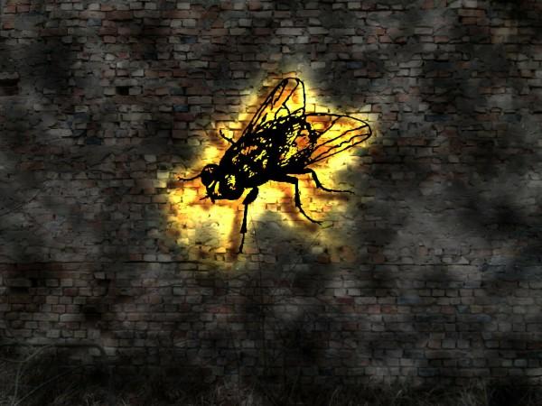 Fliege-Insekt 3D Wanddekoration aus Holz mit LED Licht