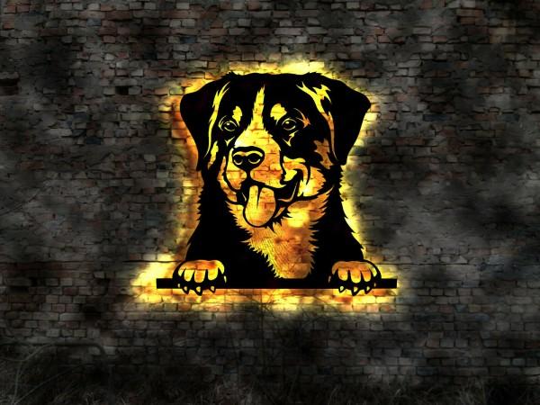 Apenzeller Sennenhund 3D-Wandleuchtbild mit LED