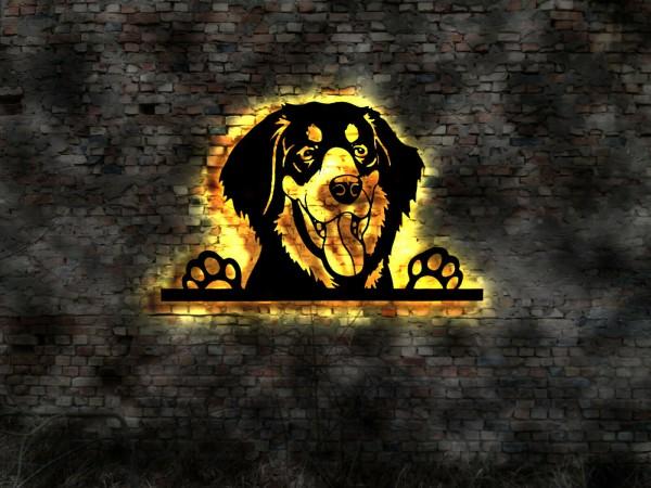 Hovawart 3D-Effekt Wandbild Hund aus Holz mit LED Leuchte