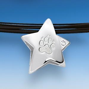 Edler Anhänger Stern mit Hundepfote und Zirkonia