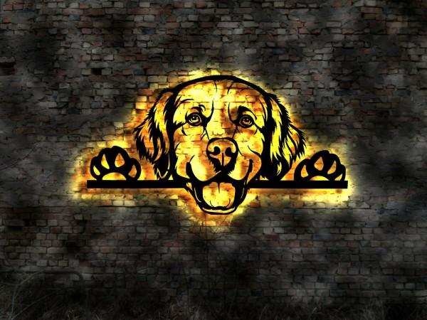 Golden-Retrieverxg2cypcqAzinq