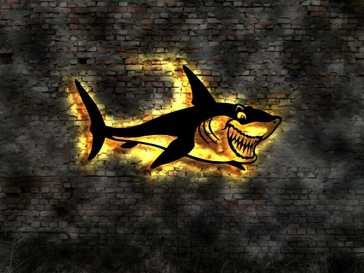 Hai-Fisch_2